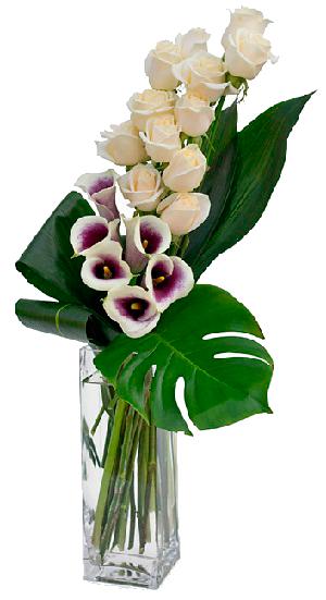 Flores-Funeraria Peris
